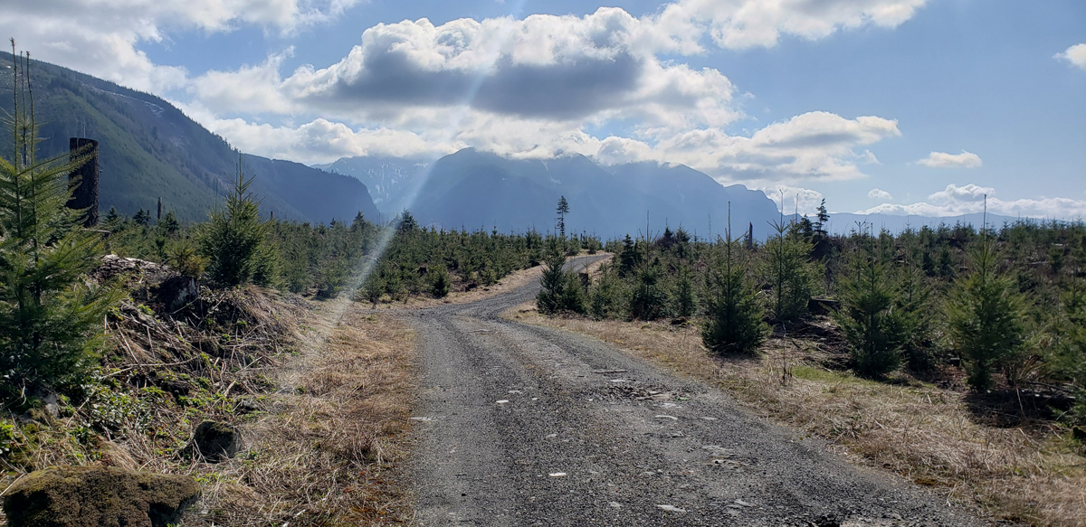 gravel road and mt si